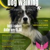 A.I.C.S. PN… presenta in Nordic Dog Walking!